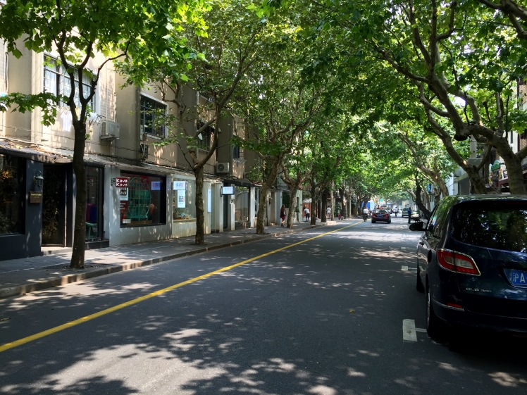 This is the French Concession