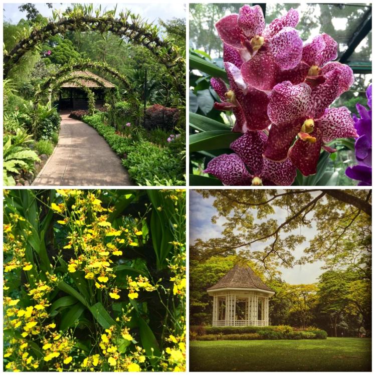 collage-botanic-gardens