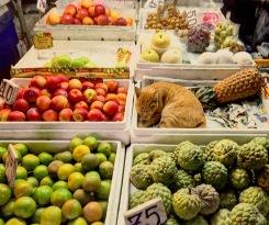 Bangrak Fresh Market, Bangkok